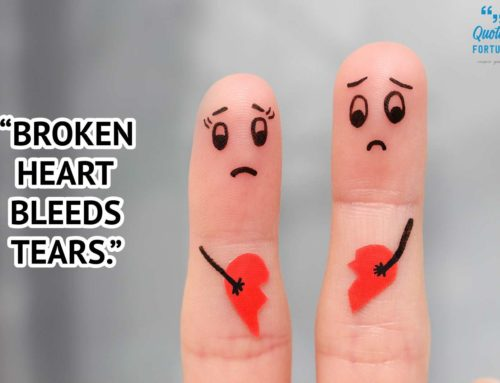 50+ Broken Heart Quotes and Heartbroken Sayings with Photos